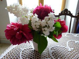 pivoines et lilas blanc
